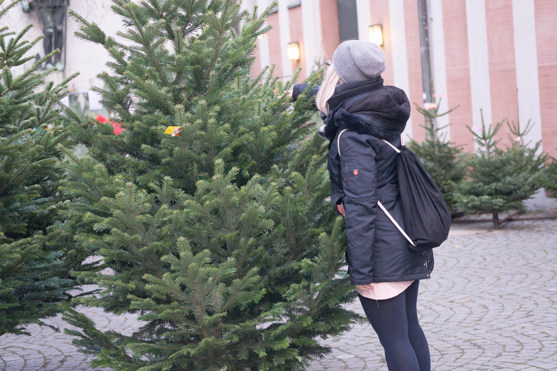weihnachteninwien